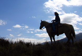 a-Slideshow-WY-hill-side-horse