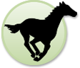 Running Horse Realty Property