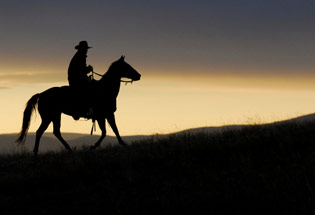 a-Slideshow-WY-sunset-horse