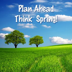 Think Spring Scene with Green Grass and Trees