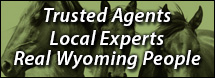 Wyoming Realtor
